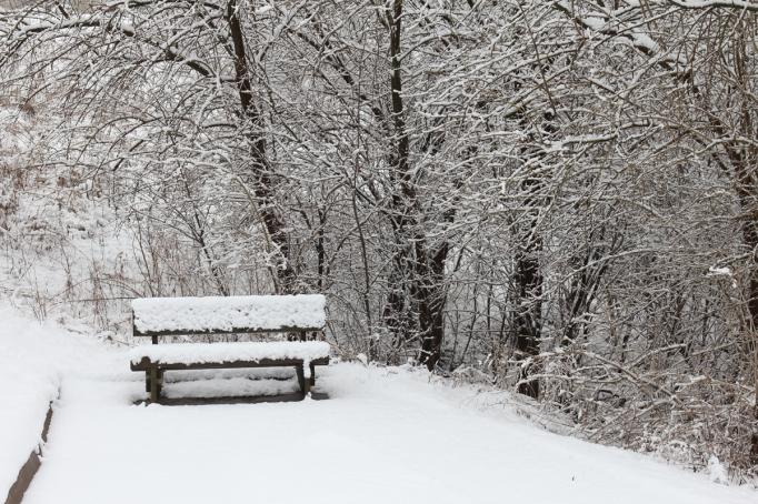 snowy-bench